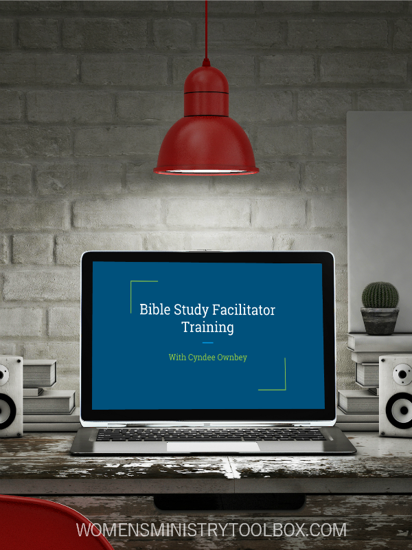 Need help with your Bible study group? Help is here! The Bible Study Facilitator Training is just what you need!
