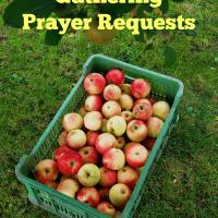 Gathering Prayer Requests